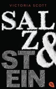 salz_stein