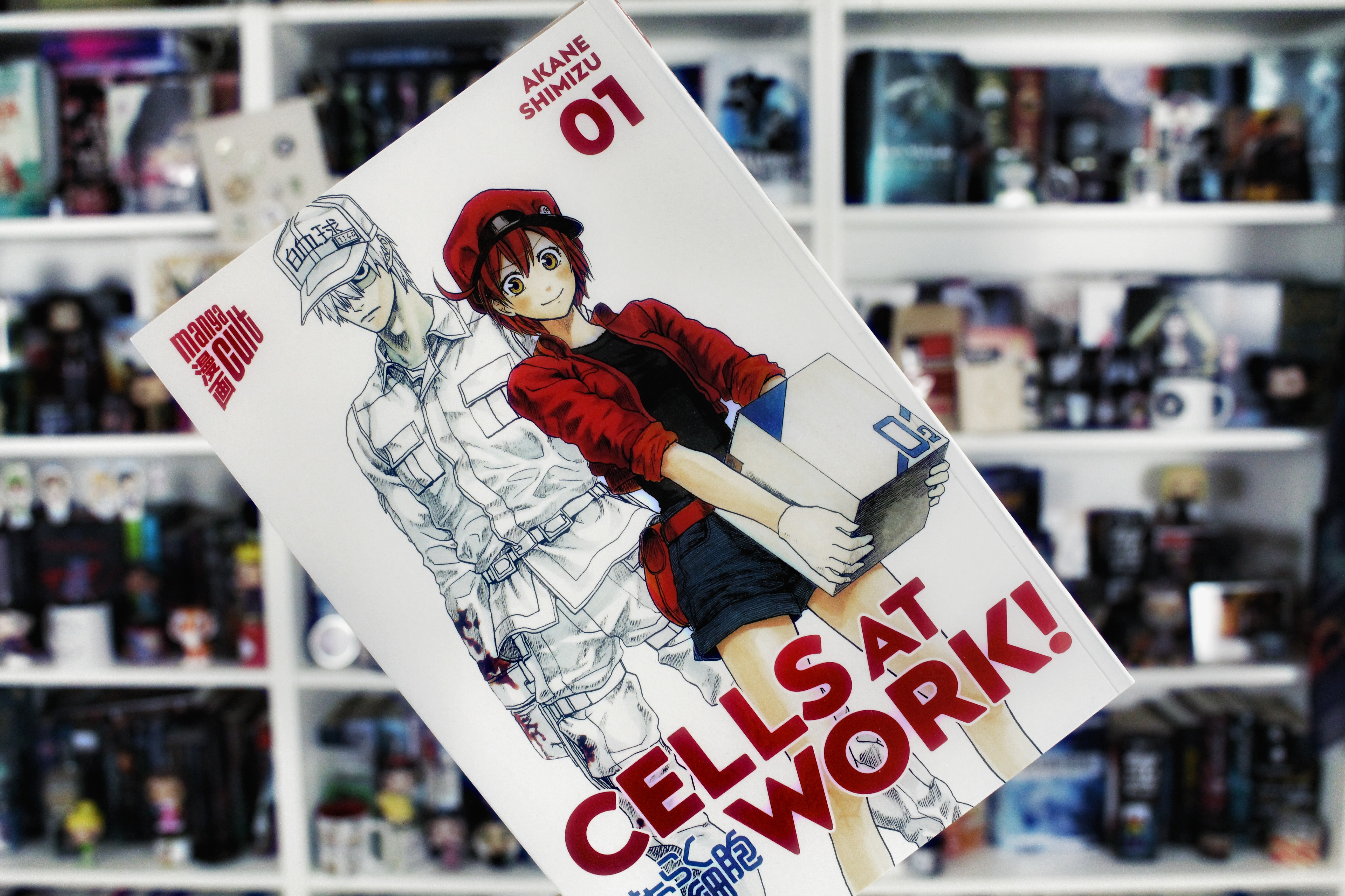 Rezension | Cells at Work 01 von Akane Shimizu